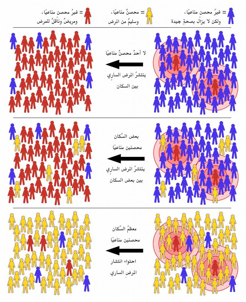 مناعة القطيع Herd immunity